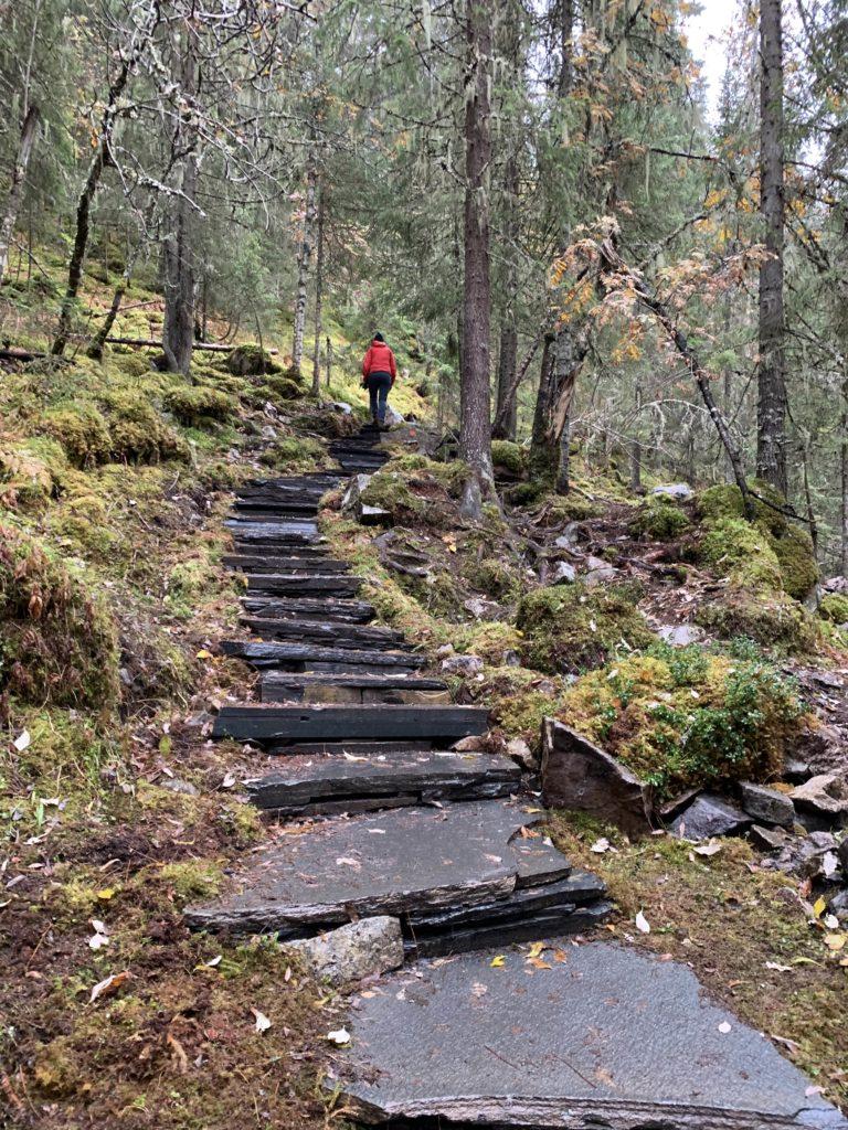 Stentrappa på väg till Fettjeåfallet